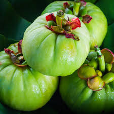 Garcinia cambogia -  werkt niet -  instruction -  review